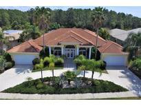 View 4561 Roanoak Way Palm Harbor FL