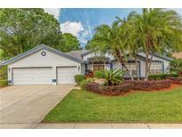 View 1130 Kings Way Ln Tarpon Springs FL
