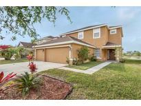 View 9330 Mandrake Ct Tampa FL