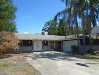 View 392 Walnut Ct Palm Harbor FL