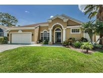 View 408 Liam Ave Tarpon Springs FL