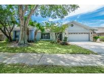 View 1111 Knollwood Dr Safety Harbor FL