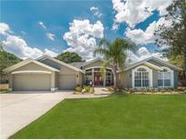 View 439 Mintwood Ter Tarpon Springs FL