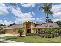 View 3732 Windber Blvd Palm Harbor FL