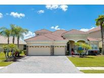 View 10751 Cory Lake Dr Tampa FL