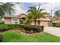 View 376 Carriage House Ln Tarpon Springs FL