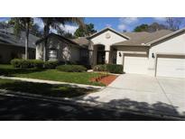 View 5905 Trevors Way Tampa FL