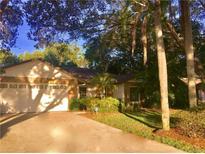 View 430 Still Meadows Cir E Palm Harbor FL