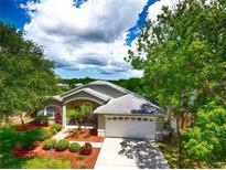 View 217 Talley Dr Palm Harbor FL