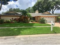 View 2977 Exeter Dr Clearwater FL