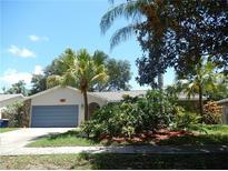 View 2770 Tasha Dr Clearwater FL