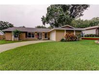 View 2864 Rustic Oaks Dr Palm Harbor FL