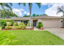 View 1801 72Nd Ave Ne St Petersburg FL