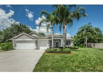 View 302 Mane Ct Tarpon Springs FL