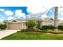 View 2146 Gold Dust Ct Trinity FL