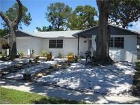 View 919 Peninsula Rd Tarpon Springs FL