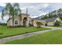 View 7738 Crescent Palm Dr Wesley Chapel FL