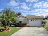 View 5032 Anclote River St Wesley Chapel FL