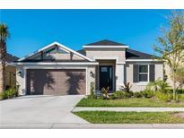 View 11610 Orange Palm Way Tampa FL