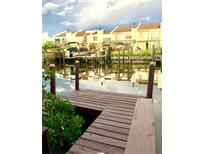 View 4319 Harbor House Dr # 4319 Tampa FL