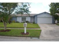 View 5024 Oakshire Dr Tampa FL