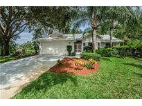 View 1651 Winners Cir Tarpon Springs FL