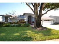 View 2682 Meadow Wood Dr Clearwater FL