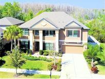 View 15601 Hampton Village Dr Tampa FL