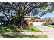 View 1454 Rosetree Ct Clearwater FL