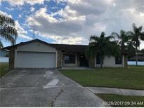 View 4501 Gossamer Ct Tampa FL