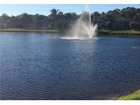 View 8503 Bella Way Tampa FL