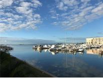 View 433 Paula Dr S # 45 Dunedin FL
