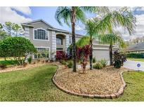 View 4037 Auston Way Palm Harbor FL