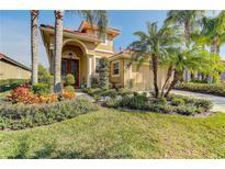 View 14635 Mirasol Manor Ct Tampa FL