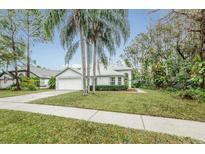 View 813 Crestridge Dr Tarpon Springs FL