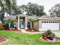 View 1953 Sapphire Ln Clearwater FL