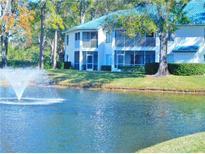 View 3574 Indigo Pond Dr # 3574 Palm Harbor FL