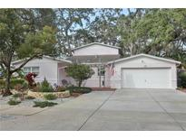 View 895 4Th St S Safety Harbor FL