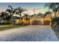 View 10724 Cory Lake Dr Tampa FL