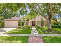 View 4486 Berisford Blvd Palm Harbor FL