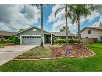 View 2830 Witley Ave Palm Harbor FL