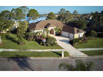 View 10503 Cory Lake Dr Tampa FL