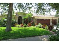 View 2643 Aster Dr Palm Harbor FL