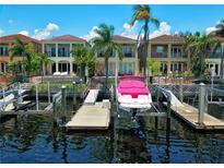 View 1023 Royal Pass Rd Tampa FL