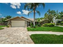 View 1001 Chatham Ct Safety Harbor FL