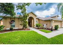 View 9009 Easthaven Ct New Port Richey FL
