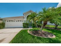 View 11414 Palm Pasture Dr Tampa FL