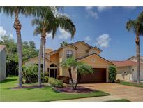 View 11116 Clayridge Dr Tampa FL