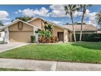 View 3439 Northridge Dr Clearwater FL