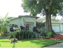 View 1710 Bell Ranch St Brandon FL